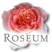 Roseum - Rosiges rund um die Rose
